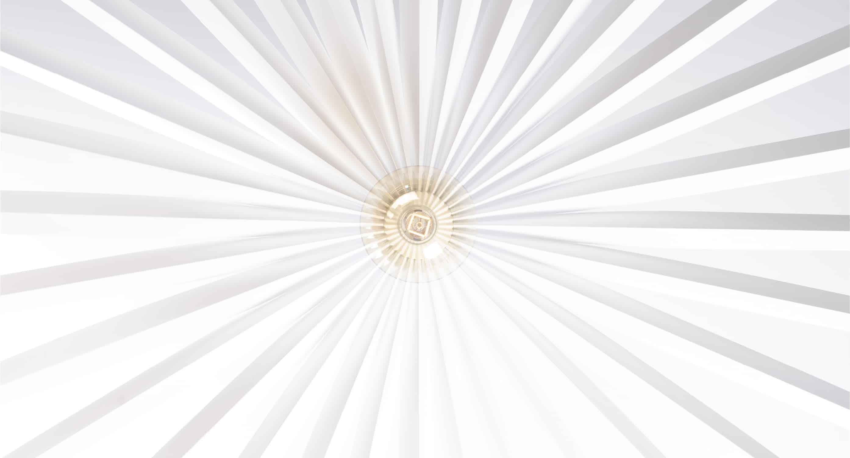 BelaLugaSoko_Filifera_Lighting_Suspension_01